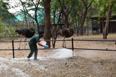 Gwalior Zoo to reopen for tourists from Feb 15