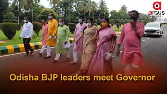 Odisha BJP leaders meet Governor over delay in civic body polls
