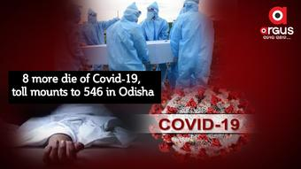 8 more die of Covid-19, toll mounts to 546 in Odisha