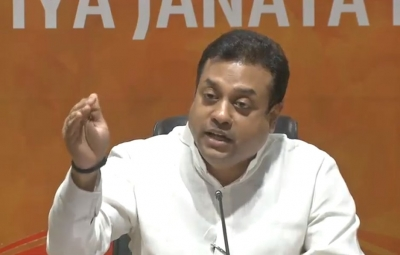 Some people working in complete harmony to spread anarchy: BJP