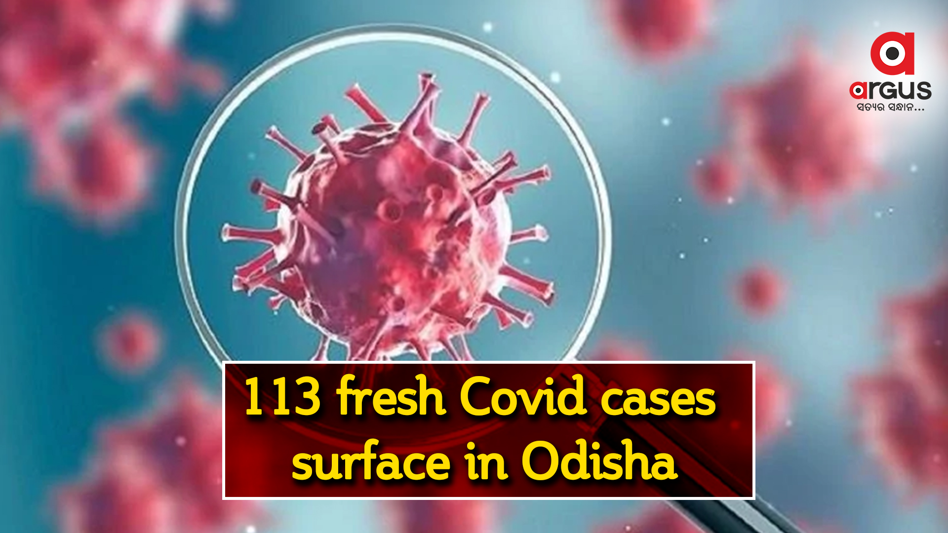 113 fresh Covid-19 cases surface in Odisha, tally mounts to 334780