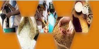 Cabinet approves allocation of additional foodgrain to NFSA beneficiaries