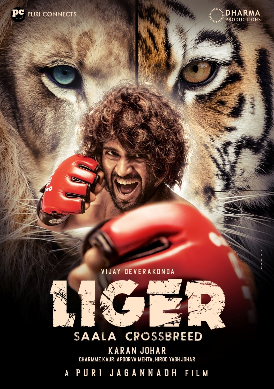 Vijay Deverakonda-Ananya Panday's 'Liger' in theatres on Sep 9