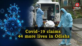Odisha reports 44 more Covid-19 deaths in last 24 hours