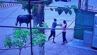 Woman attacked with knife in Bhubaneswar; incident caught on camera