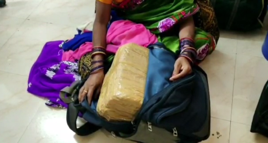 25 kg ganja seized from bus in Nabarangpur; 5 including 3 women peddlers held