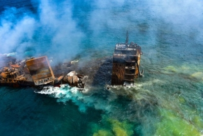 Dead animals wash up ashore in SL after burning of cargo ship