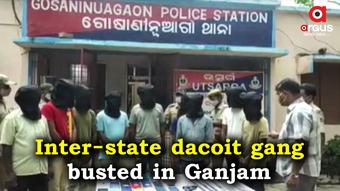 9-member dacoit gang busted in Ganjam; arms, loot items recovered