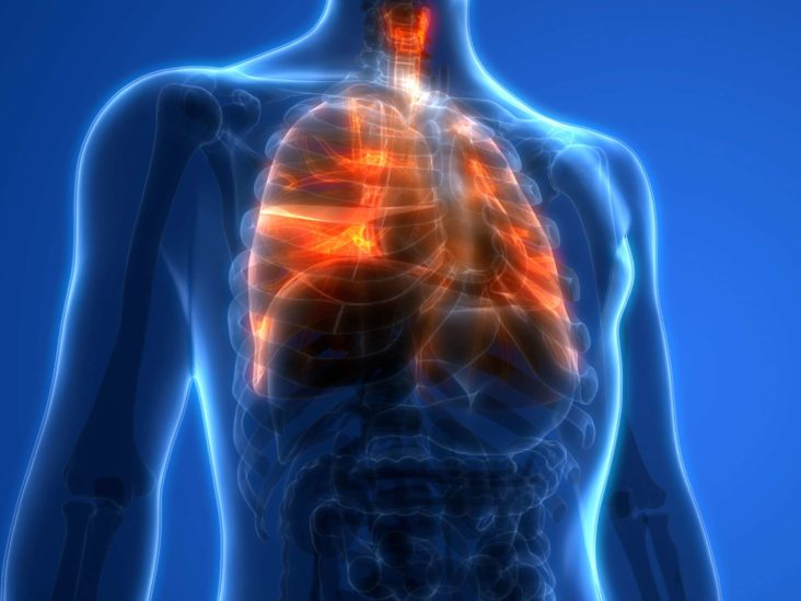 Lung ultrasound may help predict Covid patient outcomes