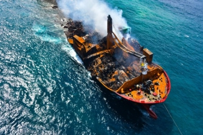 176 turtles, 20 dolphins dead after cargo ship fire in SL