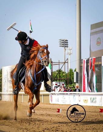 India to host equestrian tent pegging World Cup qualifiers