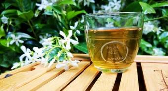 Green tea compound boosts protein's tumour-suppressing activity