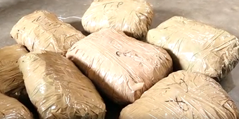 Ganja worth Rs 10L seized; 5 arrested in capital city