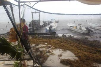 Tropical storm Dolores makes landfall in Mexico