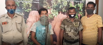 Four poachers arrested in Nilgiri forest