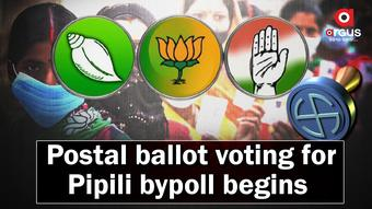 Postal ballot voting for Pipili by-election begins