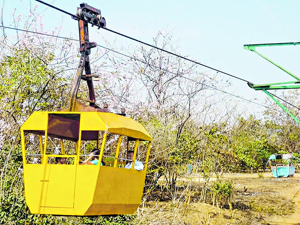 5 ropeways to be set up in Odisha in 16 months: Minister