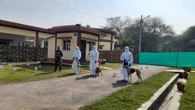 Army canines can detect Covid virus in real time situation
