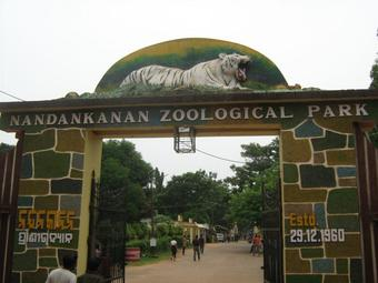 Nandankanan Zoo, Botanical Park closed till May 15