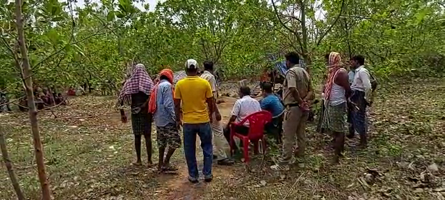 Elderly couple killed in Ganjam cashew jungle