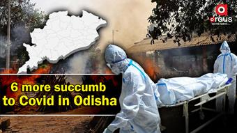 Odisha adds 6 more Covid fatalities; death toll mounts to 8,134