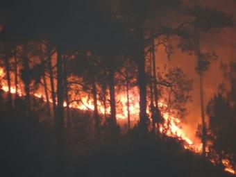 Rains may have scaled down Uttarakhand forest fires