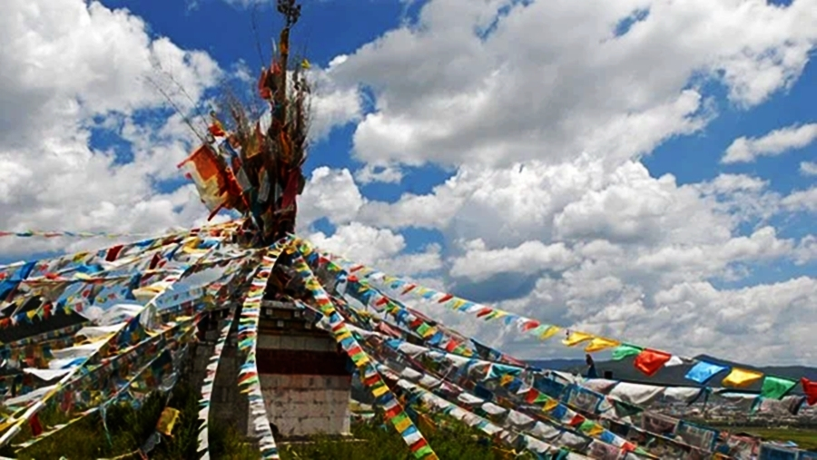 Tibetans to contribute to PM CARES Fund