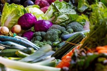 Customized diets are essential to mental health: Study