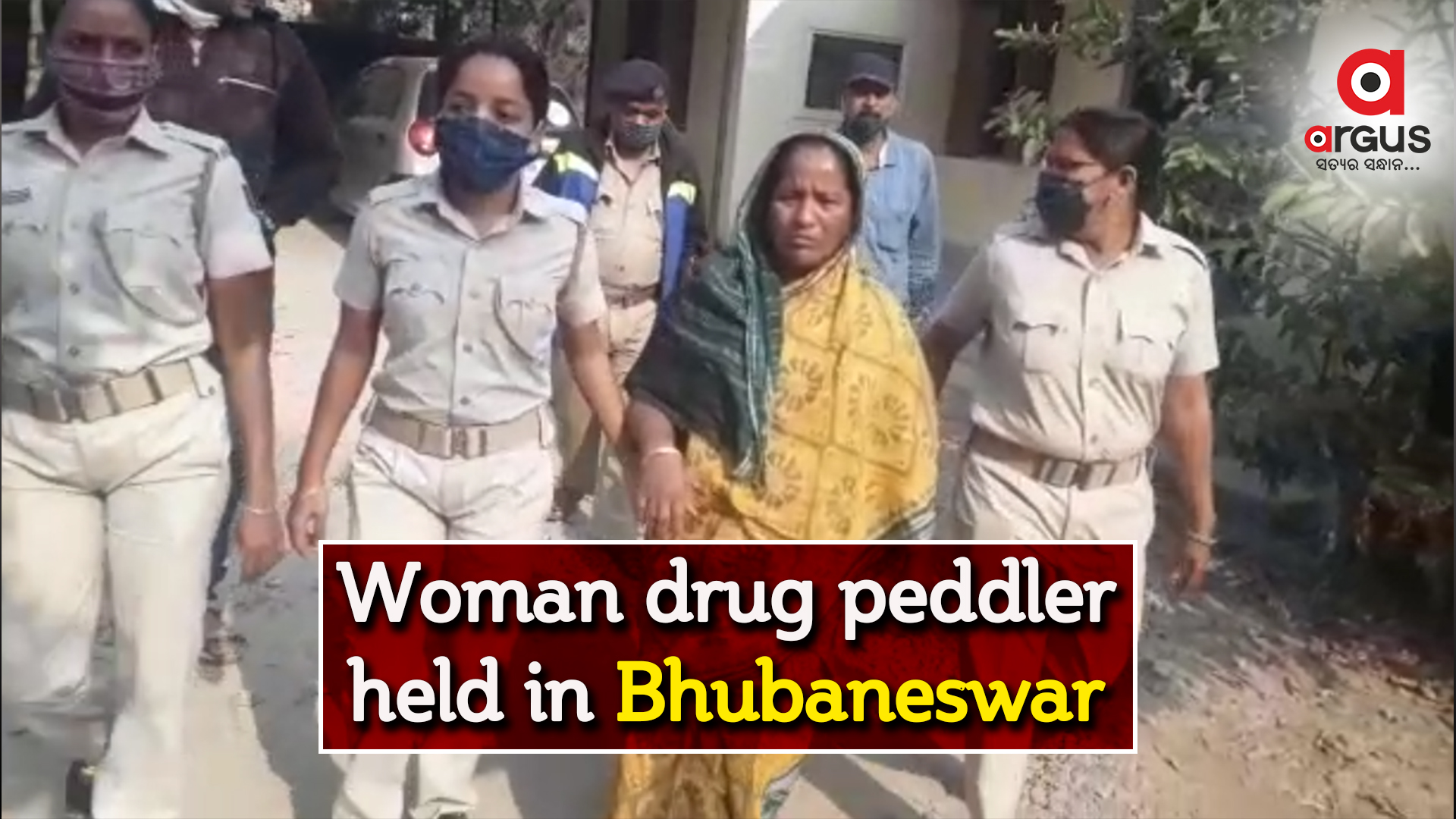 185 gram brown sugar seized, woman drug paddler held  in Bhubaneswar