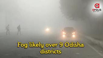 IMD forecasts shallow to moderate fog over 9 Odisha districts