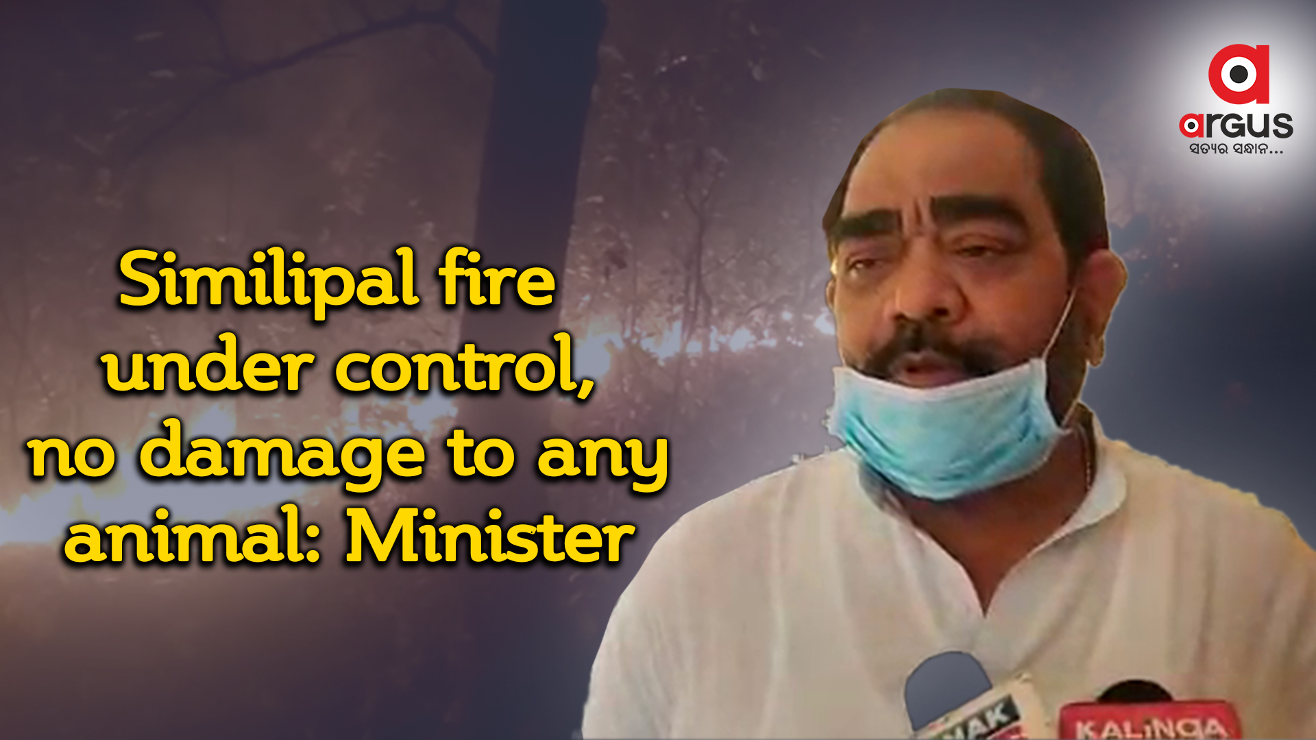 Similipal fire under control, no damage to any animal: Minister