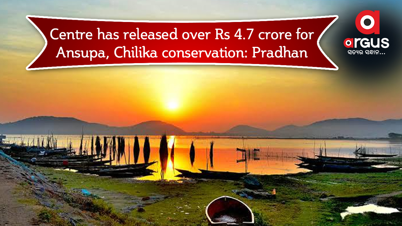 Centre has released over Rs 4.7 crore for Ansupa, Chilika conservation: Pradhan
